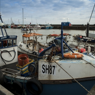 ab_brid_harbour_051