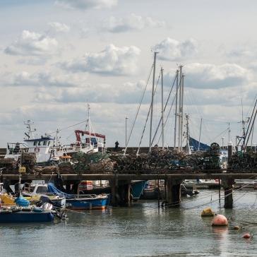 harbour8