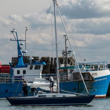 harbour9
