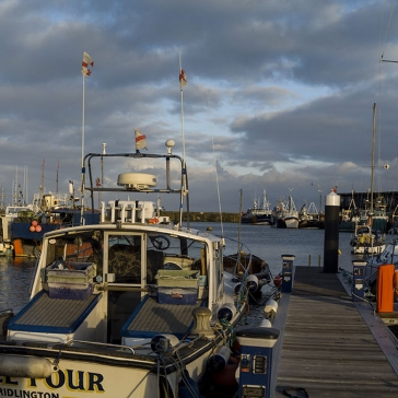 ab_brid_harbour_014